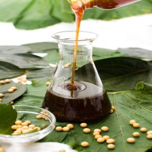 Water Soluble/Modified Soya Lecithin Liquid