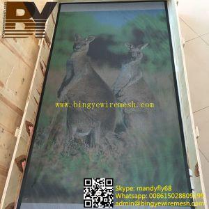Powder Coated Security Screen Door Mesh pictures & photos
