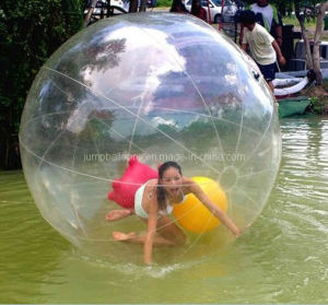 Water Park Inflatable Equipment Water Walking Ball (D1003A) pictures & photos