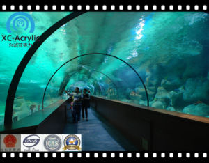 Customized Acrylic Top-Quality Tunnel pictures & photos