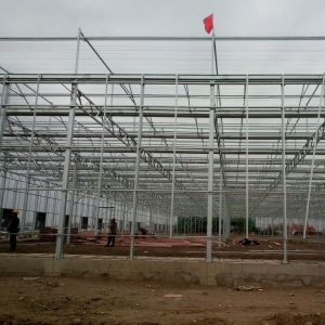 Venlo PC Greenhouse FP96G40 pictures & photos