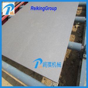 Roller Conveyor Abrator Blasting Equipment pictures & photos