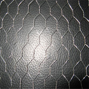 Tree Guard Hexagonal Wire Mesh pictures & photos