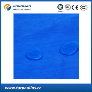 Blue Color UV-Treated Wear-Resistance PE Tarpaulin for Pool Cover pictures & photos