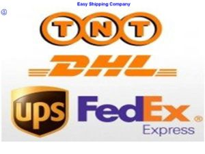 Consolidate Express/Courier Service /Door to Door to USA Shipping pictures & photos