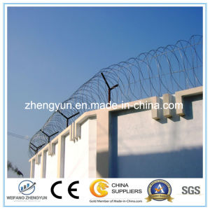 Good Quality Barbed Wire Razor Blade Barbed Wire pictures & photos