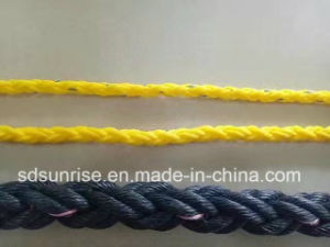 Premium Quality PP Multifilament Rope in 4 Strands 8 Strands pictures & photos