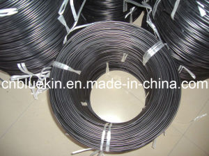 ABS Welding Rods pictures & photos