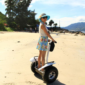 Two Wheeled Self Balancing Easy Rider Electric Scooter pictures & photos