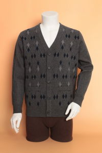 Yak Wool Cardigan Garment/ Cashmere Clothing/Knitwear /Fabric/ Wool Textile pictures & photos