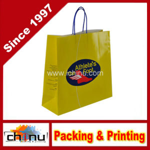 Gift Shopping Kraft Paper Bag (2135) pictures & photos