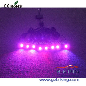 LED Rock Light Control by Cellphone pictures & photos