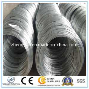 Hot Dipped Galvanized Wire / Wire Rod / Steel Wire pictures & photos