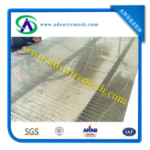 Flat Wire Mesh Belt with High Quality pictures & photos