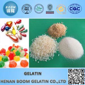 Technical Gelatin pictures & photos