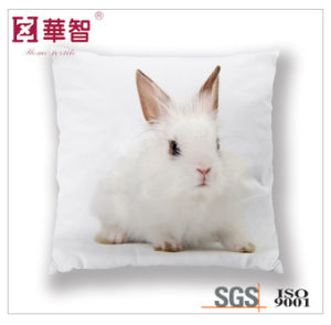 Digital Printed Cushion Cover, Home Decorative Cushion pictures & photos
