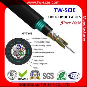Manufacturers of Outdoor Fiber Optics Armoured 12 16 24 48 96 144 288core Draka Fiber Optical Cable (GYTY53) pictures & photos