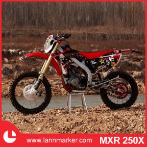 250cc Mini Motorbike pictures & photos