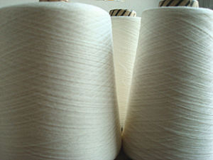 Viscose Silk Blenched Yarn Raw White pictures & photos