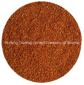 Hot Sale Red Millet in Husk
