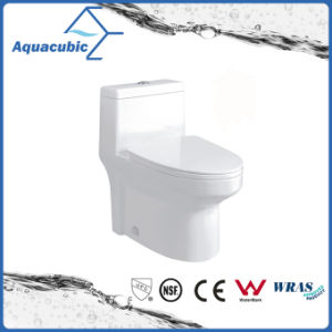 Siphonic One Piece Toilet in White (ACT9318) pictures & photos