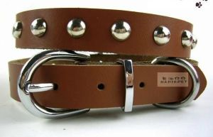 Pet Dog Cat Puppy Fashion Collar (cl3013) pictures & photos