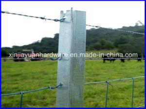 1.58kg/M-2.04kg/M Black /Galvanized Y Star Picket for Sale pictures & photos