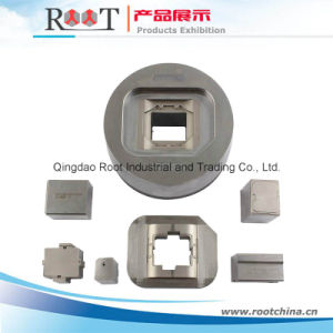 High Precision Mould Inserts pictures & photos