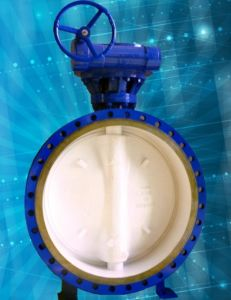 Fangled Butterfly Valve pictures & photos