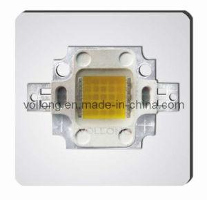 25W Multi-Chip LED Floodlight LED