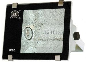 Flood Light (QYTG300-A Single) pictures & photos
