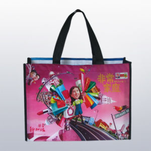 Eco-Friendly Shopping Bag (CXNWB-001)