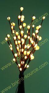 LED Lighting Branch (LDS100601)