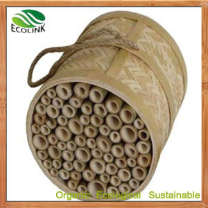 Natural Bamboo Bee House / Insect House for Garden pictures & photos