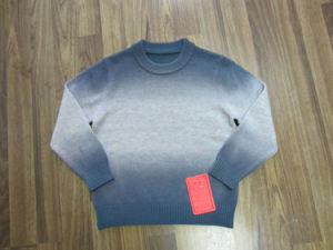 Childred′s Sweater (CH1101)