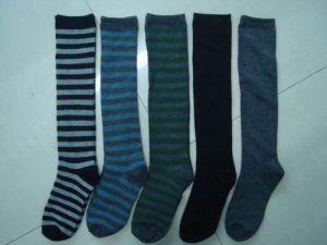 Ladies′ Socks (HGS5108)