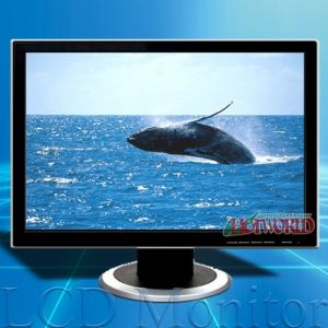 19 Inch LCD Monitor (mt19910)