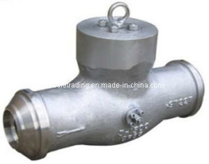 BW SW Check Valve pictures & photos