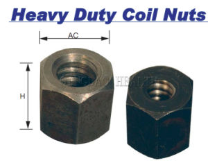 "1 3/4"" Heavy Duty Coil Nut pictures & photos"