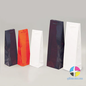 Promotional Event Bags/ Paper Bags/ Gift Bags/ Bag/Gift Bag