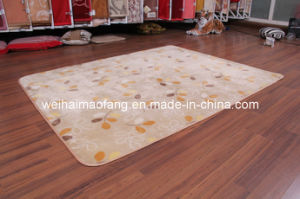 Luxury Raschel Mink Polyester Picnic Carpet (NMQ-CPT010) pictures & photos