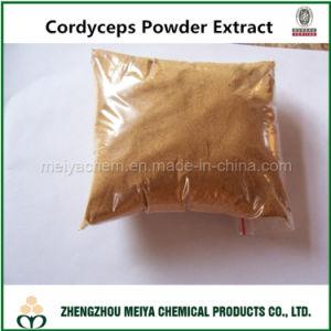 100% Natural Cordyceps Mycelium Powder Polysaccharide/Cordycepic Acid for Support Immune System pictures & photos