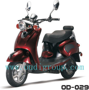 Electric Motorcycle (OD-029)