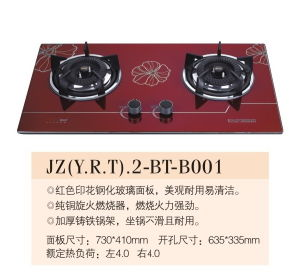 Gas Cooker (B001)