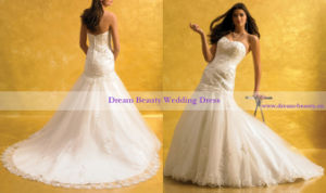 Wedding Gown & Bridal Gown (Hs08-Mic)