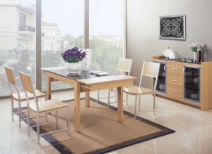 Dining Room Furniture (5T02)