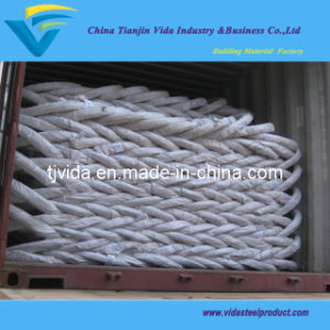 Electro Galvanized Wire pictures & photos