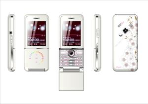 Anycool V520 Dual SIM Card Dual Standby Mobile Phone