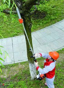 Long Pole Chain Saw L260