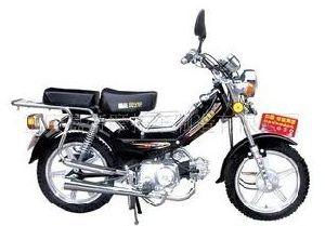 Moped (JH30)